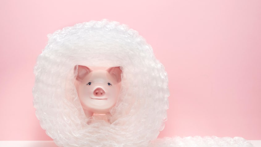 safety pig
