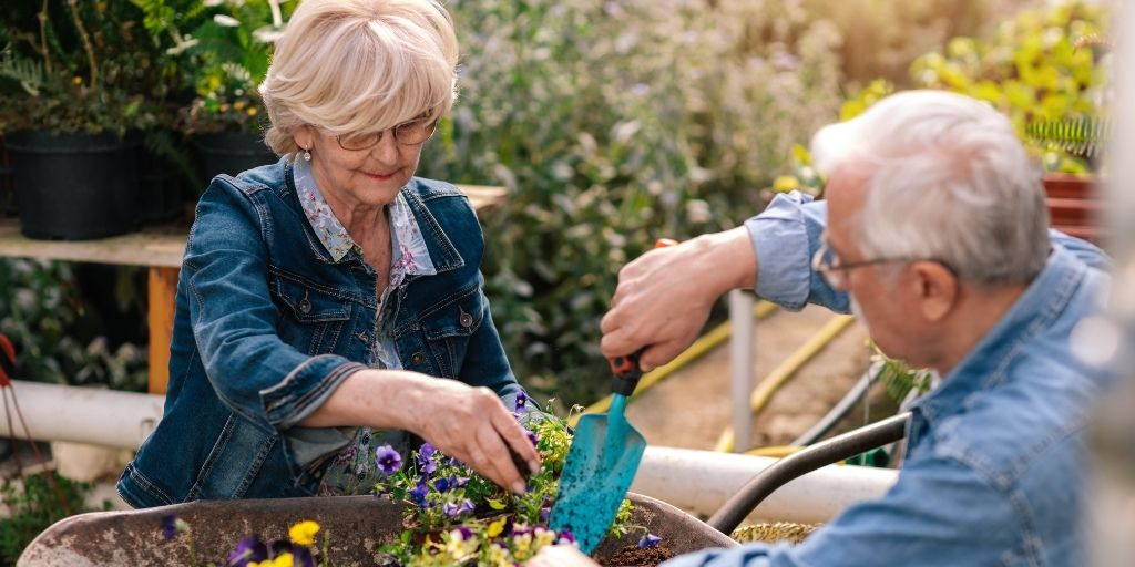 retired gardening