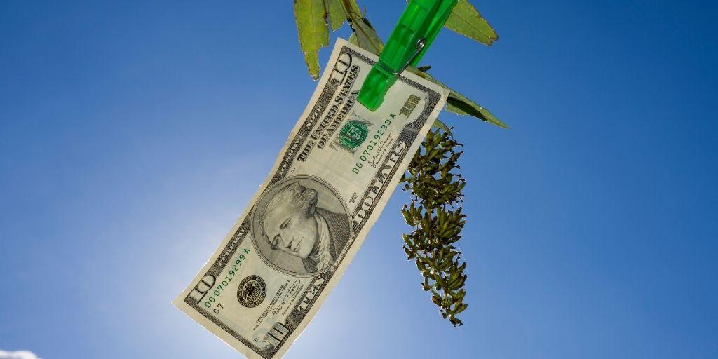 money on branch